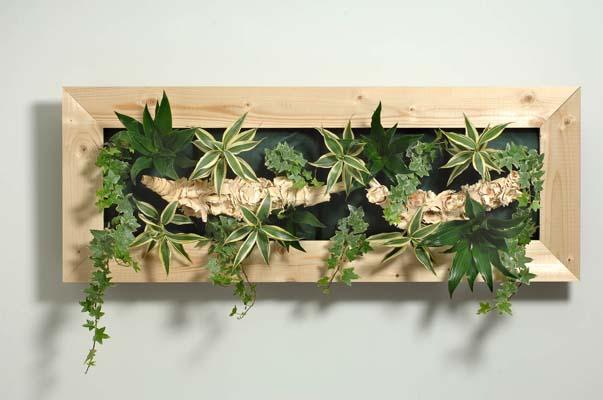 Galerie virtuelle de Walflower, tableaux végétaux d6d242bf389