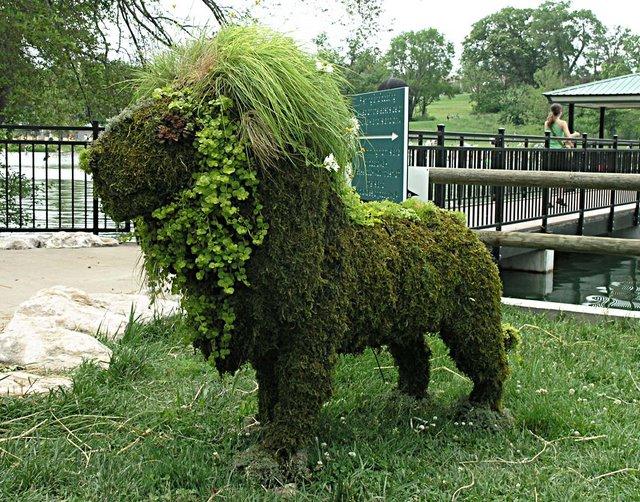 L art topiaire pour embellir son jardin - Jardin topiaire ...