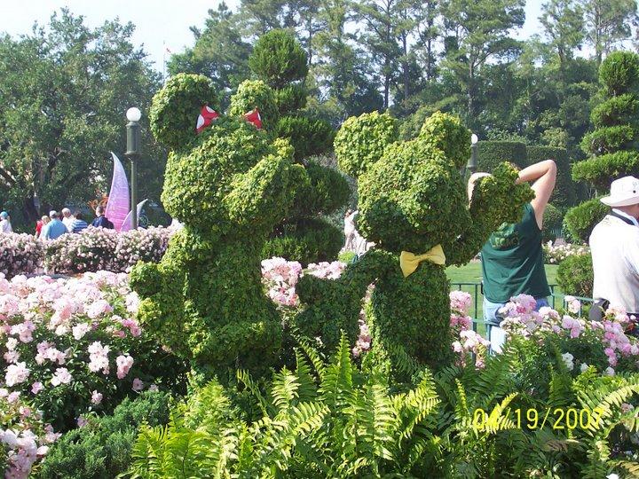 L art topiaire pour embellir son jardin Embellir son jardin