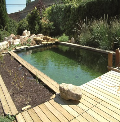 Piscine bio h2 eau sp cialiste de l 39 am nagement d 39 espace for Bassin piscine naturelle